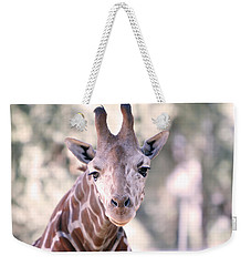 Weekender Tote Bag featuring the pyrography Giraffe Staring  by Shoal Hollingsworth