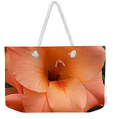 Gladiola In Peach Weekender Tote Bag by Dora Sofia Caputo Photographic Art and Design