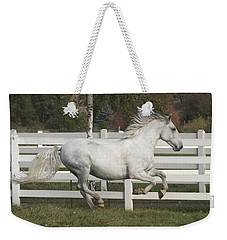 Glorious Gunther Weekender Tote Bag by Wes and Dotty Weber