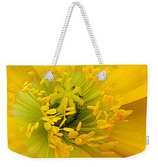 Weekender Tote Bag featuring the photograph Glory Of Nature by Deb Halloran