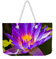 Glowing From Within Weekender Tote Bag by Jane Luxton