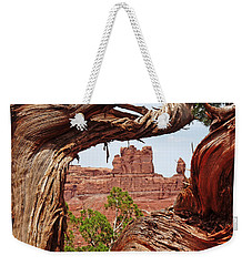 Weekender Tote Bag featuring the photograph Gnarly Tree by Alan Socolik