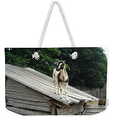 Weekender Tote Bag featuring the photograph Goat On The Roof by Kerri Mortenson