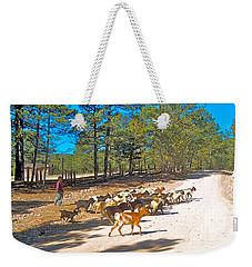 Goats Cross The Road With Tarahumara Boy As Goatherd-chihuahua Weekender Tote Bag