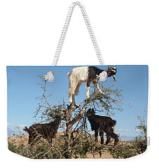 Goats In A Tree Weekender Tote Bag
