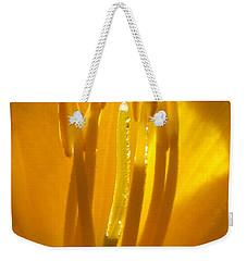 God's Light Shining Through Weekender Tote Bag