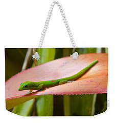 Gold Dust Day Gecko #2 Weekender Tote Bag by Venetia Featherstone-Witty