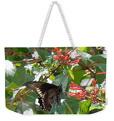 Weekender Tote Bag featuring the photograph Gold Rim Swallowtail by Ron Davidson