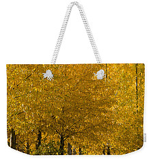 Weekender Tote Bag featuring the photograph Golden Aspens by Don Schwartz