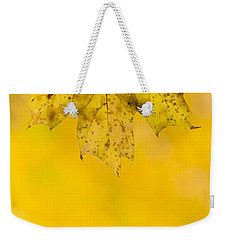 Weekender Tote Bag featuring the photograph Golden Autumn by Sebastian Musial