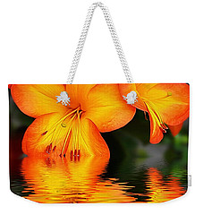Golden Dreams Weekender Tote Bag by Kaye Menner