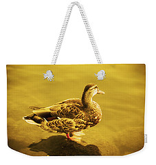 Weekender Tote Bag featuring the photograph Golden Duck by Nicola Nobile