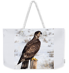 Golden Eagle On Fencepost Weekender Tote Bag
