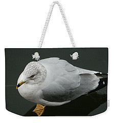 Weekender Tote Bag featuring the photograph Golden Eye View by Emmy Marie Vickers
