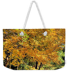 Weekender Tote Bag featuring the photograph Golden Fenceline by Gordon Elwell