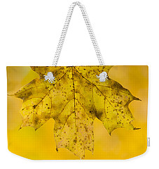 Weekender Tote Bag featuring the photograph Golden Maple Leaf by Sebastian Musial