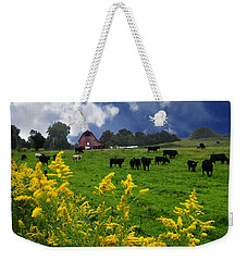 Golden Rod Black Angus Cattle  Weekender Tote Bag