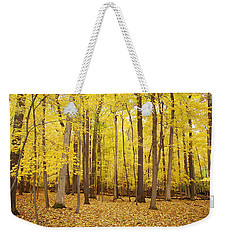 Golden Woods Weekender Tote Bag by Aimee L Maher Photography and Art Visit ALMGallerydotcom