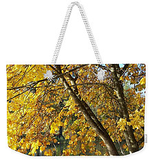Weekender Tote Bag featuring the photograph Golden Zen by Chalet Roome-Rigdon