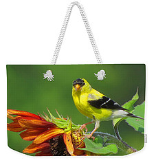 Weekender Tote Bag featuring the photograph Goldfinch Pose by Dianne Cowen