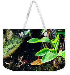 Weekender Tote Bag featuring the photograph Goldfish In Pond by Silvia Ganora