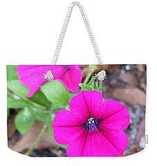 Weekender Tote Bag featuring the photograph Good Morning by Andrea Anderegg
