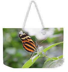 Good Morning Butterfly Weekender Tote Bag