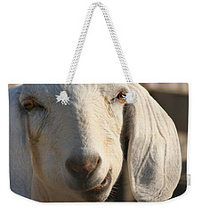 Goofy Goat Weekender Tote Bag by Art Block Collections