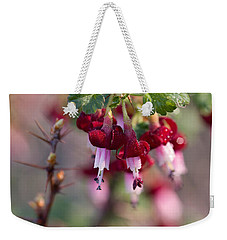 Weekender Tote Bag featuring the photograph Gooseberry Flowers by Peggy Collins