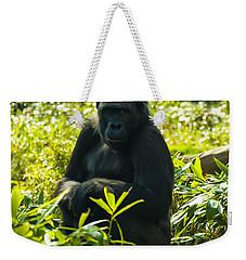 Gorilla Sitting On A Stump Weekender Tote Bag by Chris Flees