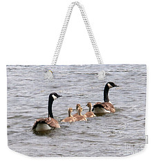 Gosling Escort Weekender Tote Bag by Joseph Baril
