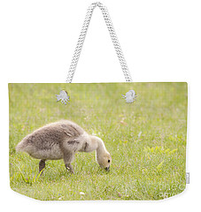 Gosling Weekender Tote Bag by Jeannette Hunt