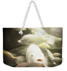 Weekender Tote Bag featuring the photograph Gouramis by Bradley R Youngberg