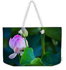 Graceful Lotus. Pamplemousses Botanical Garden. Mauritius Weekender Tote Bag