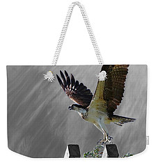Grand Ole Osprey Weekender Tote Bag by Davandra Cribbie