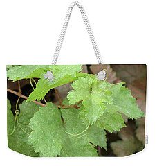 Weekender Tote Bag featuring the photograph Grapevine by Laurel Powell