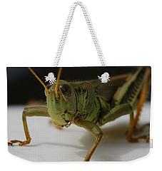 Grasshopper Weekender Tote Bag by Dan Sproul