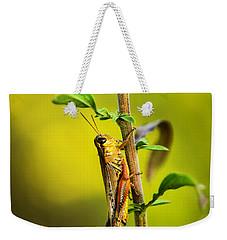Grasshopper Days Weekender Tote Bag