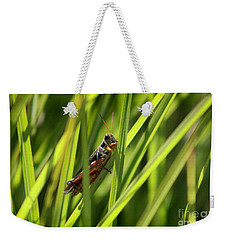 Grasshopper In Grass Weekender Tote Bag