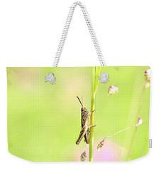 Grasshopper  Weekender Tote Bag by Tommytechno Sweden