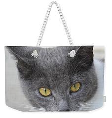 Gray Cat - Listening Weekender Tote Bag