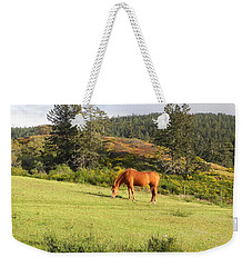 Weekender Tote Bag featuring the photograph Grazing by Cheryl Hoyle