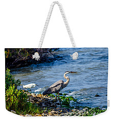 Great Blue Heron And Snowy Egret At Dinner Time Weekender Tote Bag