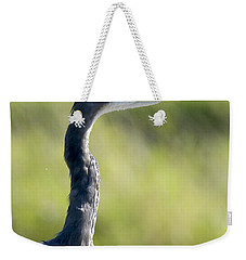 Great Blue Heron Backlit Weekender Tote Bag