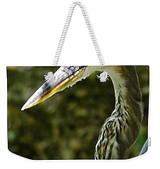 Weekender Tote Bag featuring the photograph Great Blue Heron by Dee Dee  Whittle