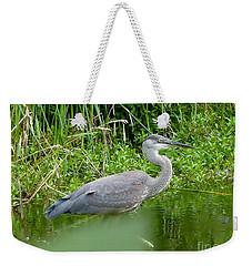 Weekender Tote Bag featuring the photograph Great Blue Heron  by Susan Garren