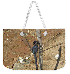 Slaty Skimmer Dragonfly Shadow Weekender Tote Bag by Donna Brown