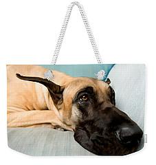 Great Dane Dog On Sofa Weekender Tote Bag