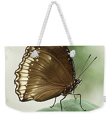 Great Eggfly Butterfly Weekender Tote Bag by Judy Whitton