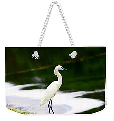 Weekender Tote Bag featuring the photograph Great Egret by Debra Forand